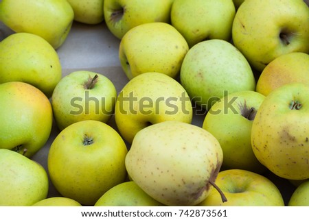 Close-up of green Golden apples for sale at Sineu market, Majorca, Spain