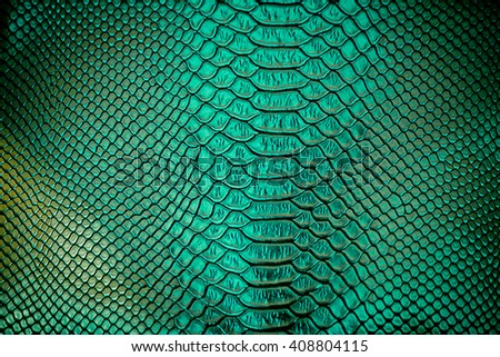 Close up of green Luxury snake skin texture use for background - stock photo