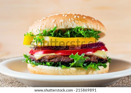 close up of hamburger on white platehomemade