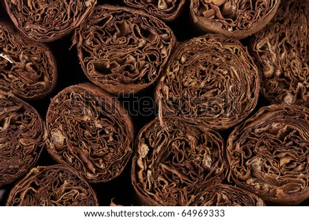 close up of hand rolled cuban cigars - stock photo
