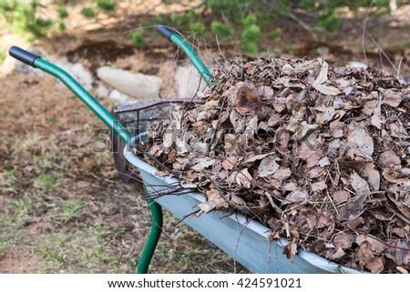 Close up of handles of wheelbarrow full of dry brawn leaf - stock photo