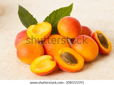 Close-up of healthy apricot fruits on tablecloth. - stock photo