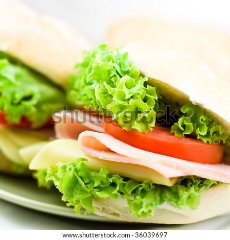 Close up of healthy sandwich