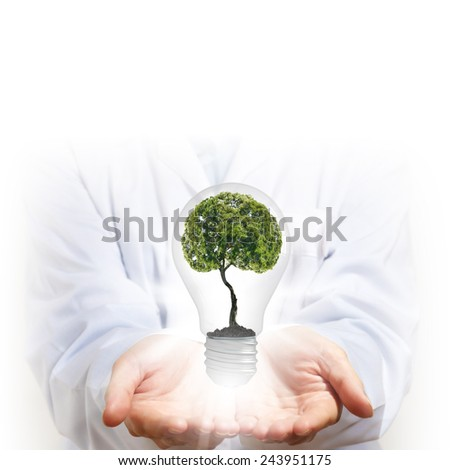 Close up of human hand holding light bulb with tree inside