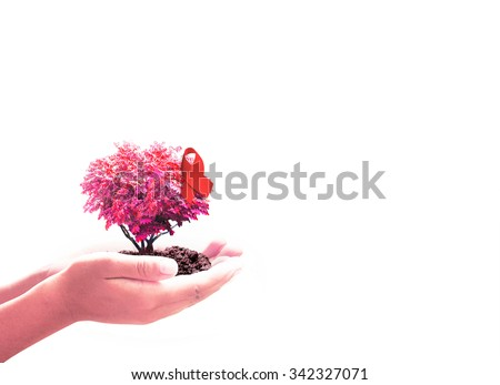 Close up of human hands holding growing red big tree in shape heart with soil and red ribbon isolated on withe background. Aids ribbon concept. - stock photo