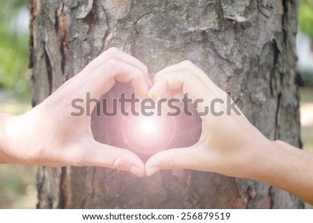 Close-up of human hands making heart in front of tree - stock photo