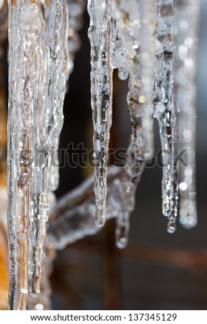 Close-up of ice on a tree in winter - stock photo