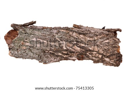 Close-up of isolated cracked stub log bark with wooden texture - stock photo