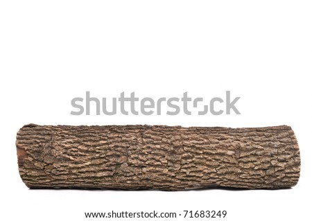 Close-up of Isolated stub log with wooden texture - stock photo