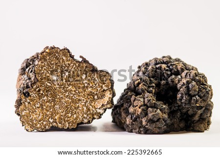 close up of italian fresh black truffle - stock photo