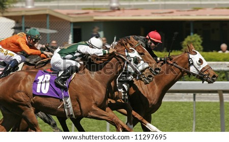 Close-Up of Jockeys Racing to the Finish Line in a Thoroughbred Horse Race - stock photo