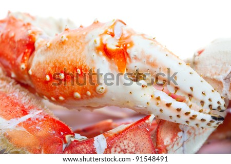 Close up of king crab legs. - stock photo