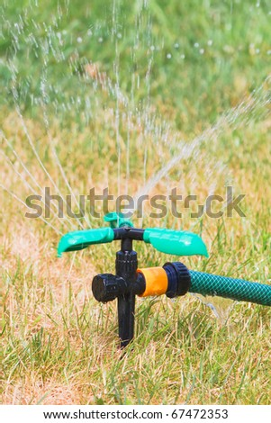 Close up of lawn sprinkler in hot summer day