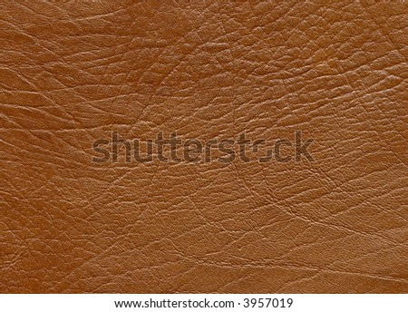 close up of leather