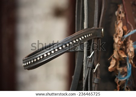 Close up of leather horse bridle brownband - stock photo