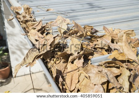 Close up of leaves in the home gutters during Autumn - stock photo