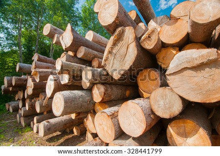 Close up of logs stacked at lumber mill in Ontario, Canada - stock photo