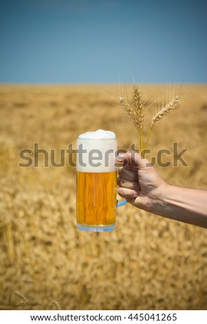 Close up of male hand holding glass mug of beer and wheat ears. Harvest field and blue sky in the background. Beer industry and natural ingredients beverage concepts.   - stock photo