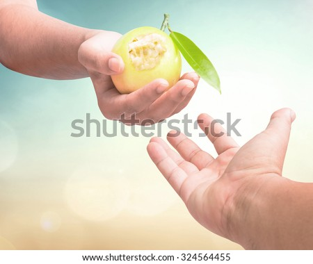 Close up of man hand reaching out to yellow eaten fruit in woman hand over blurred nature background. Tree of life and tree of knowledge of good and evil from holy bible Prophet, God's calling concept - stock photo