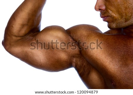 Close up of man's arm showing biceps.isolated on a white background - stock photo