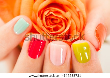 Close-up Of Manicured Nail With Nail Varnish On Rose - stock photo