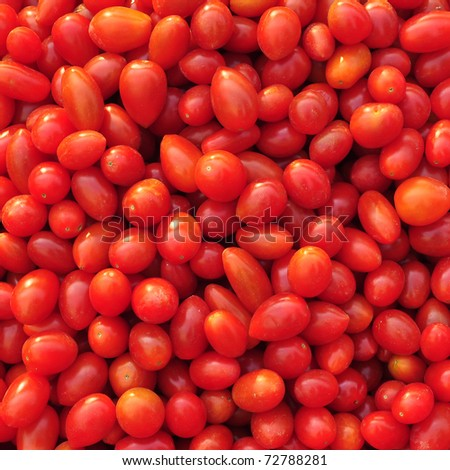 Close up of many fresh red tomatoes - stock photo