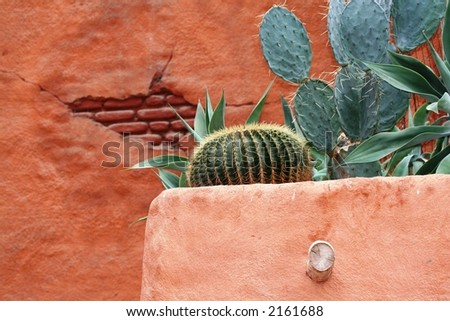 Close-up of Mexican home