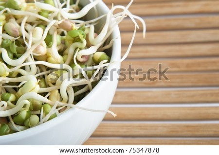 Close up of mung beansprouts in a white china bowl on a bamboo placemat.  Cropped in-camera on left side. - stock photo