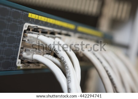 close up of network cables connected to switch with selective focus - stock photo