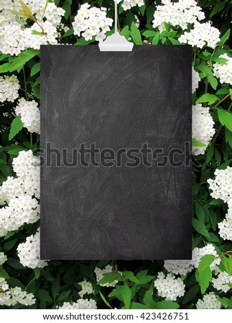 Close-up of one blank blackboard frame hanged by clip against white blooms background - stock photo