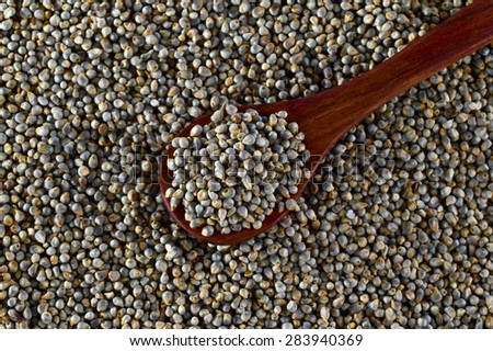 close up of Pearl Millet (Bajra) with wooden spoon.