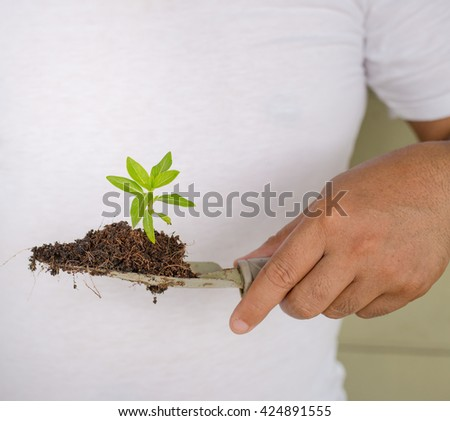 Close-up Of Person Hand Planting Small Tree