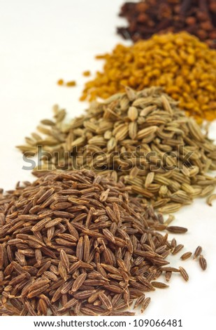 close up of pile of four seeds of spices arranged in row on white background - stock photo