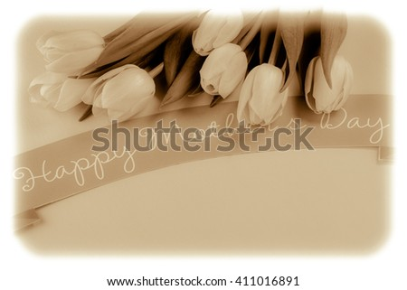 Close up of pink tulips for Mothers Day on pastel  background.