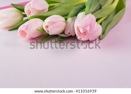 Close up of pink tulips for Mothers Day on pastel  background. - stock photo
