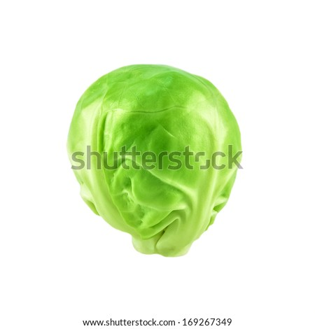 Close-up of raw brussel sprout - stock photo