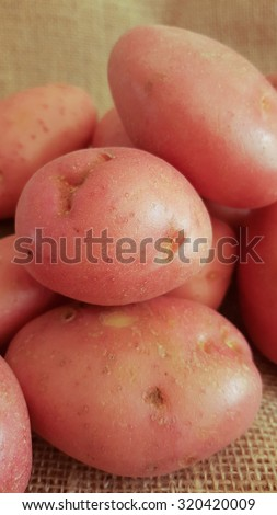 Close up of red-skinned Desiree potatoes