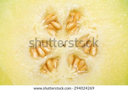 close up of ripe cantaloupe melon with seeds, studio shot  - stock photo