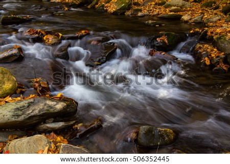 Close up of river flowing in autumn with leaves in Smoky Mountains National Park