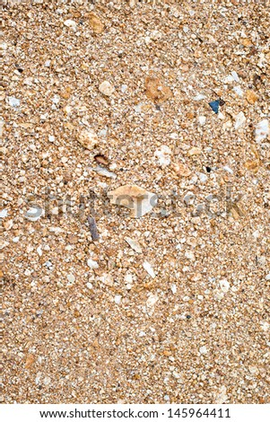 Close up of rough sand on the beach