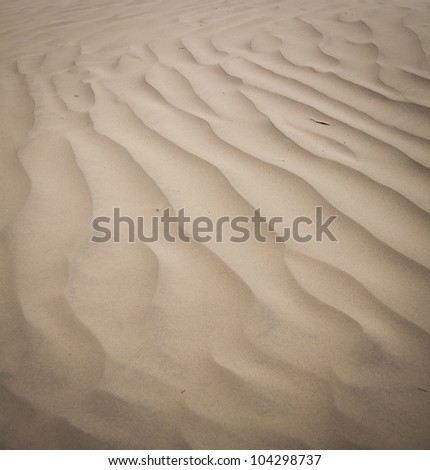 Close up of sand ripples in the dunes