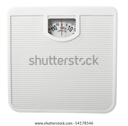 close up of scale  on white background with clipping path - stock photo