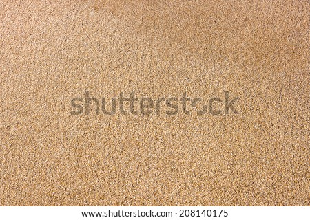 close up of sea beach sand or desert sand for texture and background