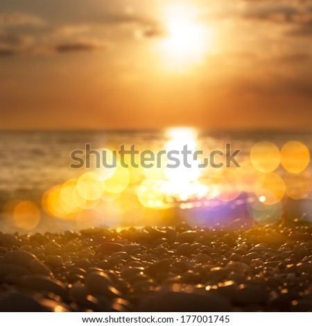 Close Up of Sea Pebble at Sunset. Shallow Depth of Field and Beautiful Bokeh. Toned Photo. - stock photo