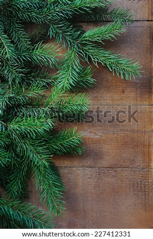 Close up of selective focus brunch of Christmas tree on wooden background - stock photo