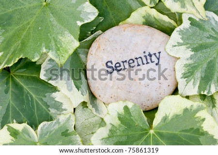close up of 'serenity' stone on ivy leaf background