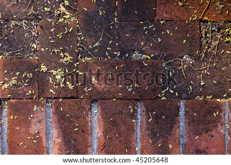 Close up of shadowed and dirty red brick walkway with leaves and debris