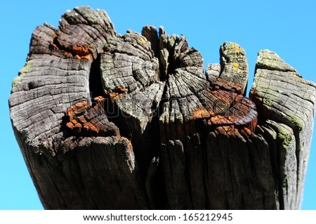 Close up of single railroad tie