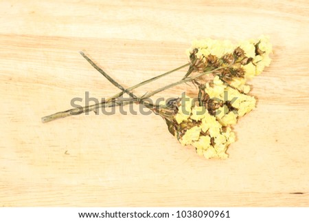 Close single yellow statice flower background stock photo royalty close up of single yellow statice flower background use for decoration on brown wooden mightylinksfo