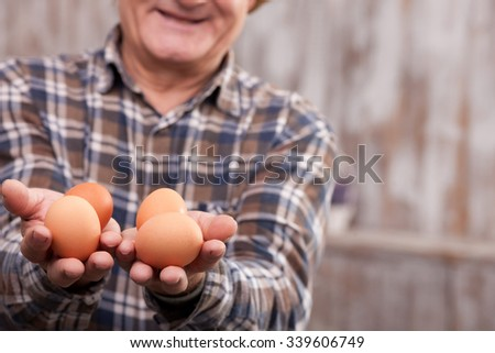 Close up of skillful old farmer holding eggs in his hands. The man is showing food to the camera and smiling. Copy space in right side - stock photo